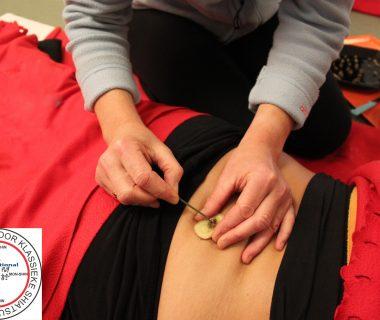 NSKS, opleidingsinstituut voor shiatsu therapeut