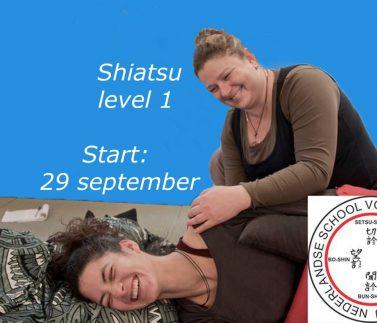 Shiatsu niveau 1