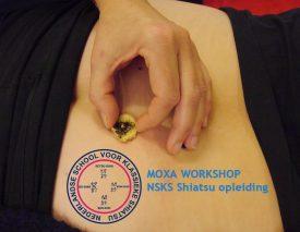 Moxa seminar NSKS 03